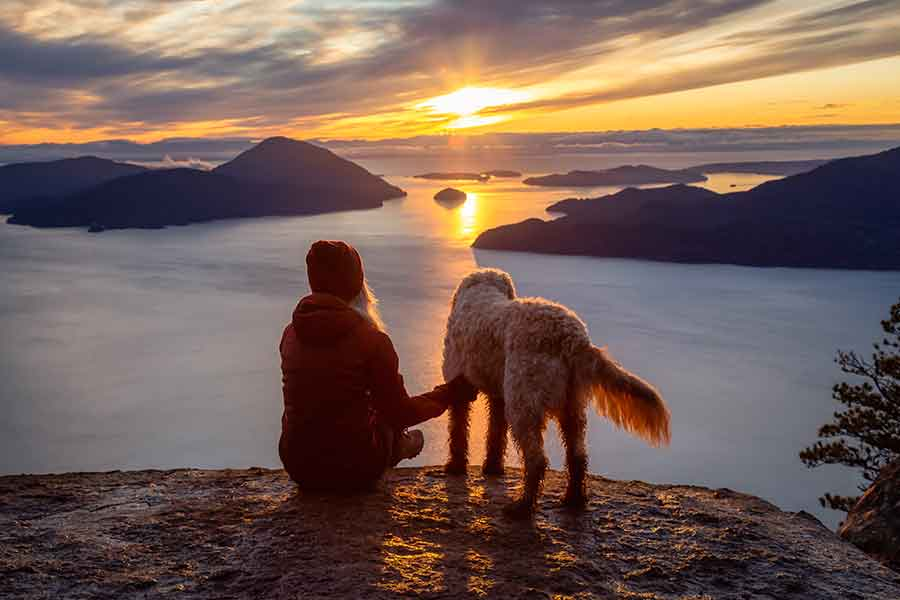 Bliv prof. dyteletepatør - Spirituel vejleder for mennesker og dyr
