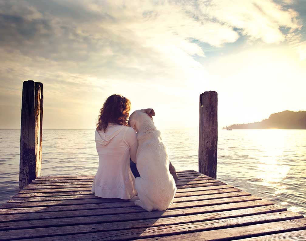 Forstå din hunds adfærd - Berit Højgaard - Spirituel vejleder